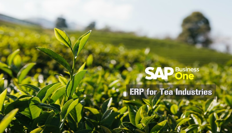 Sap emp for manufactring company india