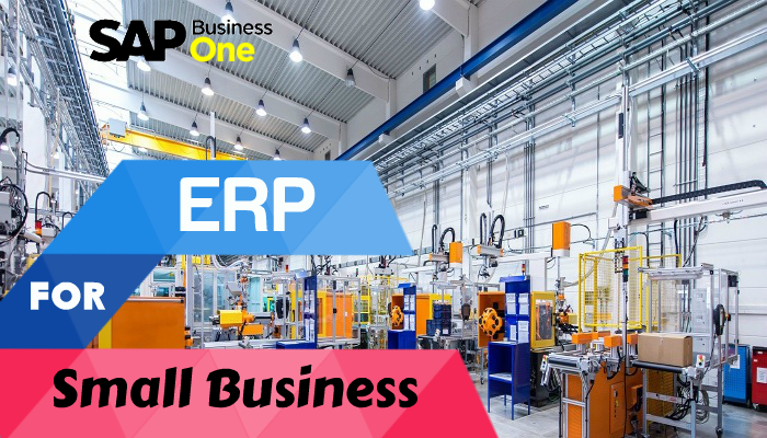 erp-for-small-business