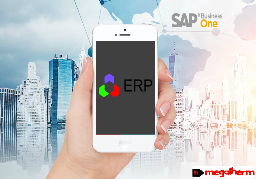 mobile-erp-solution