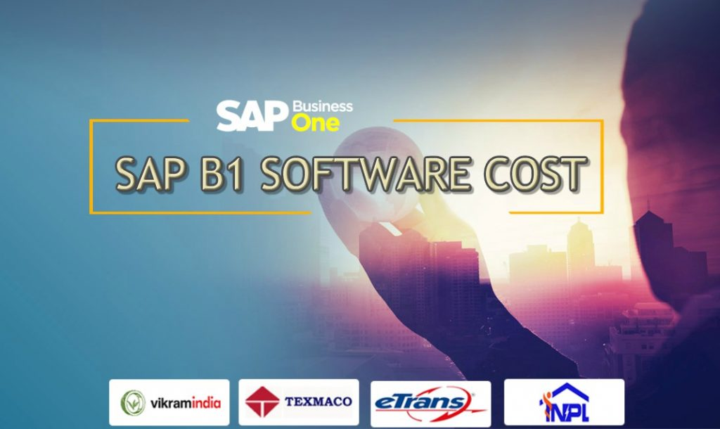 sap-b1-software-cost-india
