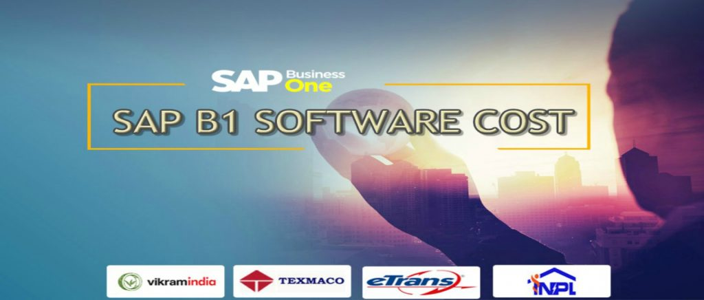 sap-b1-software-cost-india1
