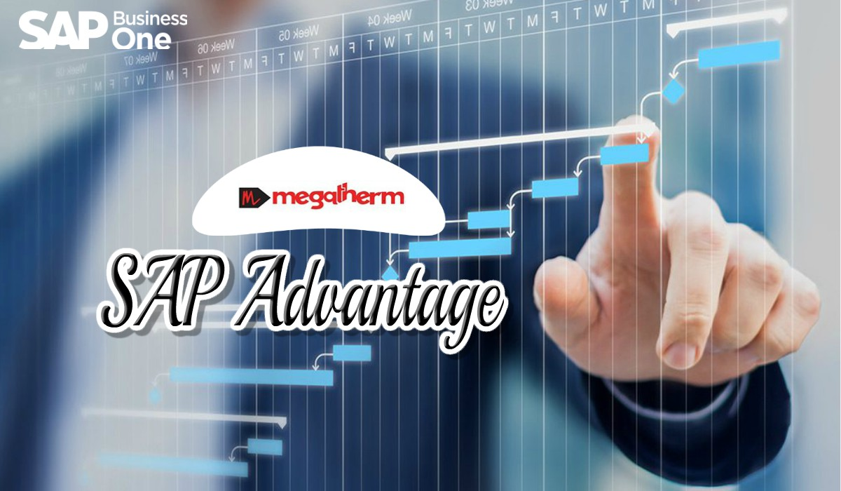 advantage-of-sap