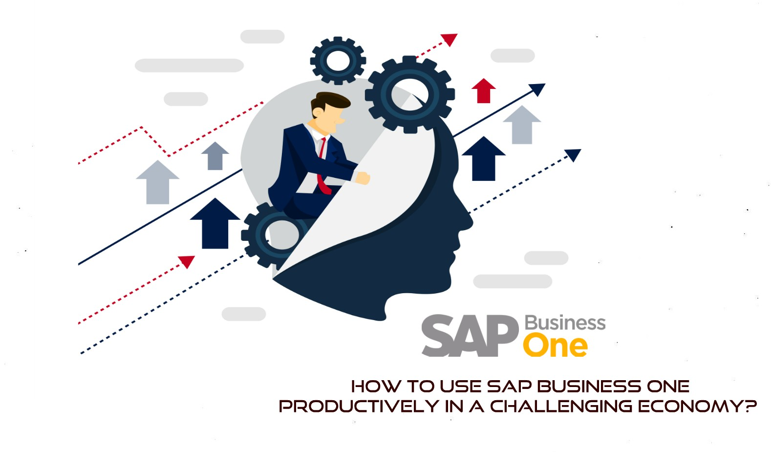 How to use SAP Business One productively in a Challenging Economy?